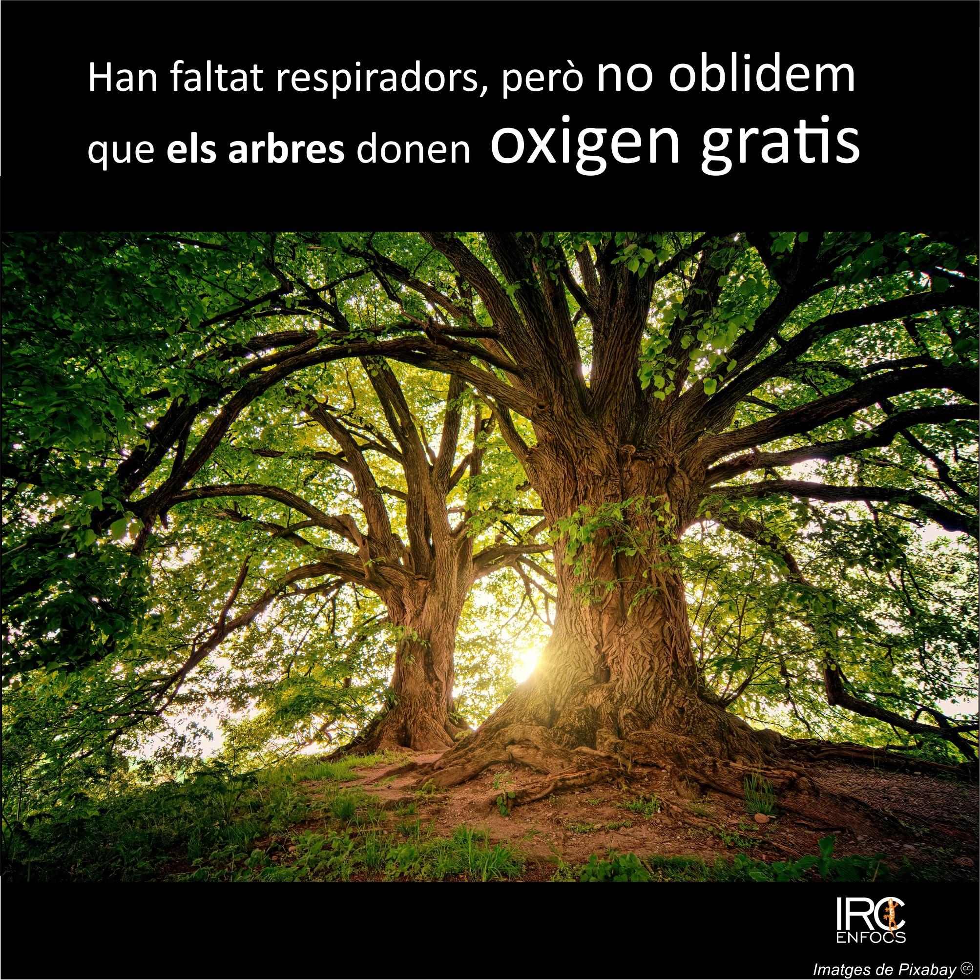 FormatFactoryoxigen